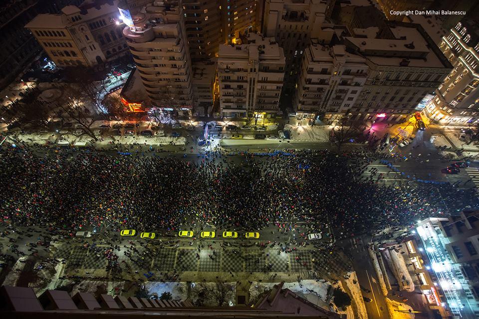 Prostia serii la Romania TV! Oameni și CÂINI plătiți să meargă la protest. Vezi cât s-ar fi plătit pentru un câine: 1