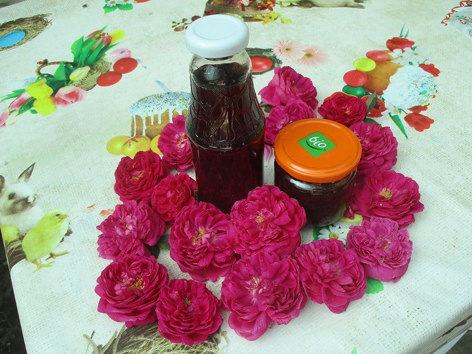 trandafiri-curtea-1