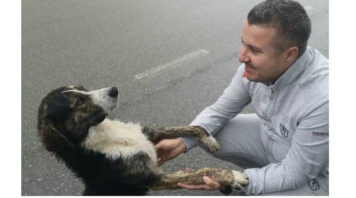 """(Foto) Cățelul erou din România ce i-a ținut de cald unui biciclist accidentat pe munte, a fost găsit și adoptat! """"Biciclistul a fost salvat de câine, care l-a protejat încălzindu-i trupul, până la sosirea jandarmilor. După ce am auzit povestea am fost ..."""" 2"""