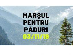 """Mergi?  Greenpeace Romania: """"Marșul pentru Păduri. Vrem protecția reală a pădurilor seculare"""" 5"""