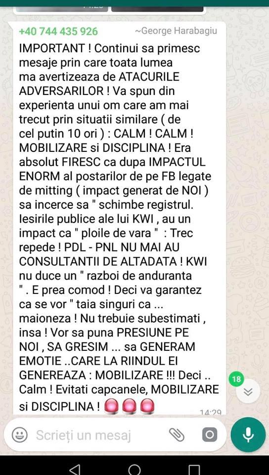Update. Liviu Dragnea, măsură radicală după ce PSD a spus că românii au huiduit-o pe Simona Halep și nu pe Gabriela Firea 4