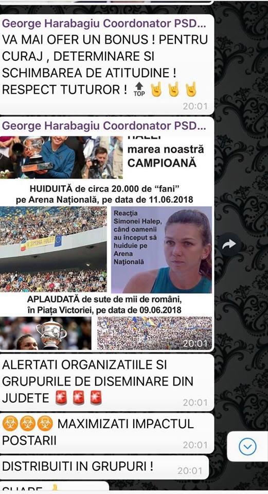 Update. Liviu Dragnea, măsură radicală după ce PSD a spus că românii au huiduit-o pe Simona Halep și nu pe Gabriela Firea 2