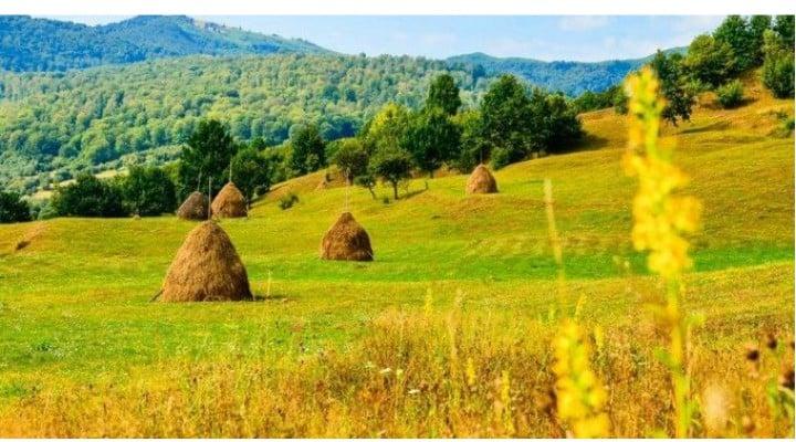 """O româncă din Anglia s-a întors în țară dar pleacă iar. """"Îmi spunea că dealurile pe care le vede venind de la Cluj la Zalău îi amintesc de cele din wallpaper-ul Windows dar ...Îţi trebuie curaj să îţi creşti copilul în România, cu sistemul de învăţământ actual, care ..."""" 1"""