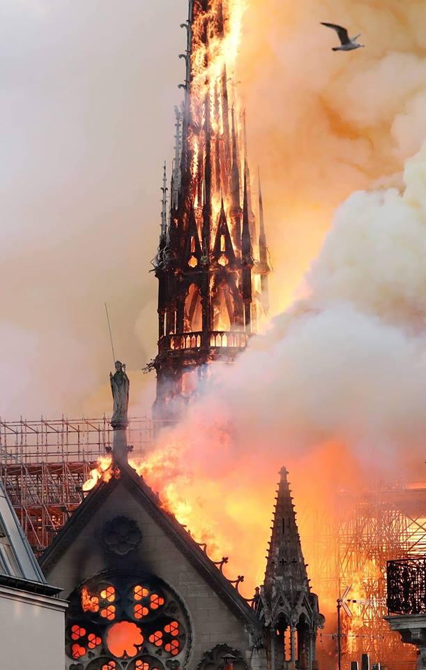 """Arde Notre Dame. Ce coincidențe. Camelia: """"15 aprilie 1912: """"Titanicul"""" se scufundă. Ia cu el 1.514 vieți15 aprilie 1989: Tragedia de pe """"Hillsborough"""": 96 de morți, 766 de răniți, cea mai mare dramă de pe un stadion european de fotbal din toate timpurile15 aprilie 2019: Catedrala Notre-Dame din Paris, una dintre cele mai frumoase opere gotice din lume, este mistuită de flăcări. Mor 800 de ani de istorie..."""" 3"""