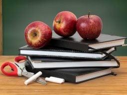 Elevii din România rămân fără o vacanță. Ministrul Ecaterina Andronescu a schimbat structura anului școlar 13