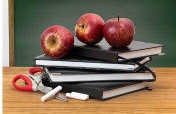Elevii din România rămân fără o vacanță. Ministrul Ecaterina Andronescu a schimbat structura anului școlar 4