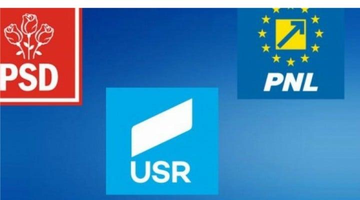 """USR bate PSD? Anca Simina: """"Sunt șanse mari ca USR-Plus să treacă pe locul al doilea înaintea PSD. Rezultatele de la ora 12.00 arată cam așa"""": 1"""