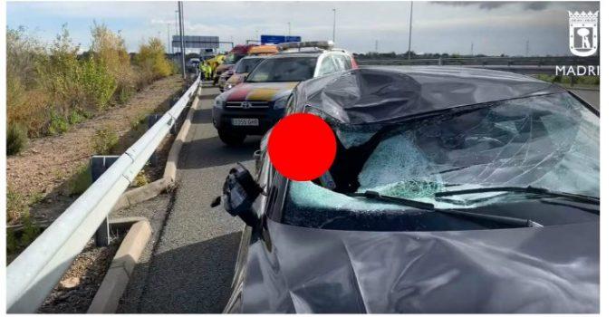 """(Foto) Zeci de şoferi români, apel disperat din Franţa: """"Avem 17 ore, suntem nemîncaţi! Faceţi ceva cu noi, că suntem blocaţi în Franţa de 8 ore cu camioanele şi nu ne zice nimeni nimic...."""" 5"""