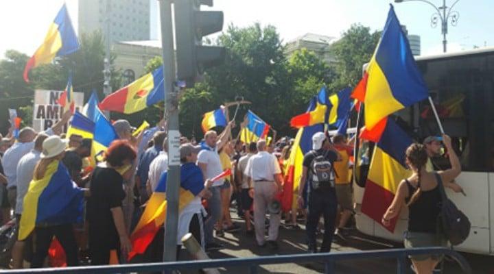 Update. Violente la Protestul Diasporei. Imbranceli si gaze lacrimogene! 1