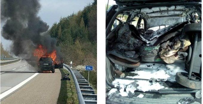 """(Foto) Șofer român erou în Germania după ce a salvat două femei și doi cai de la moarte. El este căutat pentru răsplată. Natalie Müller: """"Șofer român de camioane.În acest fel, eu caut îngerul nostru păzitor astăzi, cu siguranță caii noștri și probabil noi (eu și Claudia Priem) a salvat viața! Când am fost în ..."""" 7"""